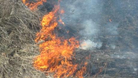 На склоне горы Ушконыр вспыхнул пожар
