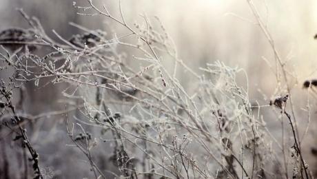 18 ноября в Казахстане ожидаются снег, метель, усиление ветра